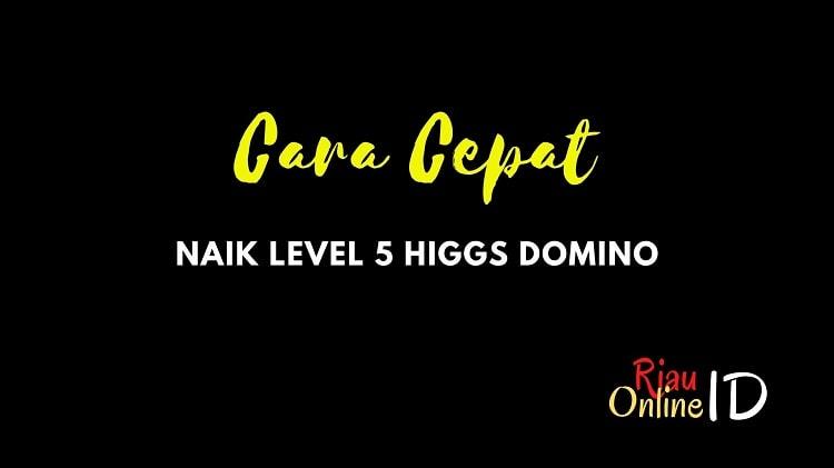 Naik Level 5 Higgs Domino Island