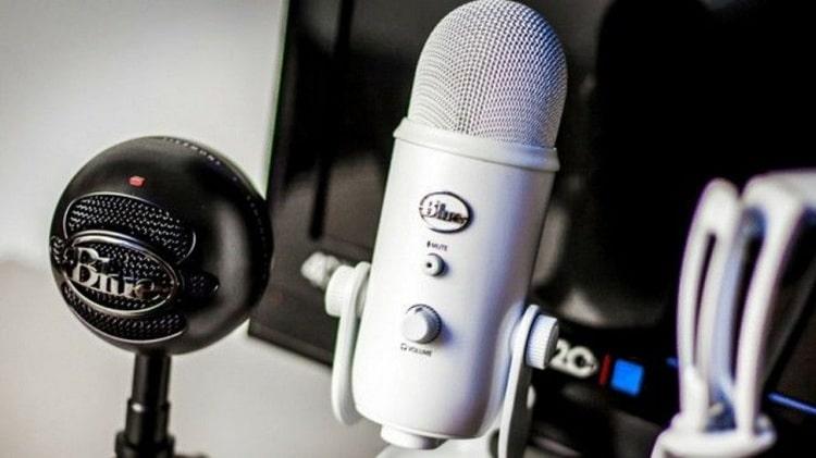 Setting Microphone di PC atau Laptop Windows 10 (Defenisi-Microphone)